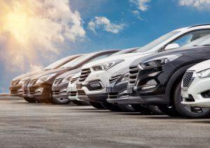 flotta nuova autonoleggio autobisio